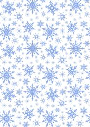 Christmas Patchwork Fabric - Keep Believing - Frosty Snowflakes White