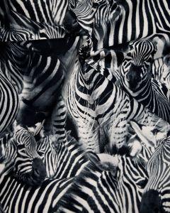 Stretch Cotton Drill Fabric - Zebra Print