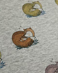 Fleece Sweatshirt Fabric - Cosy Foxes